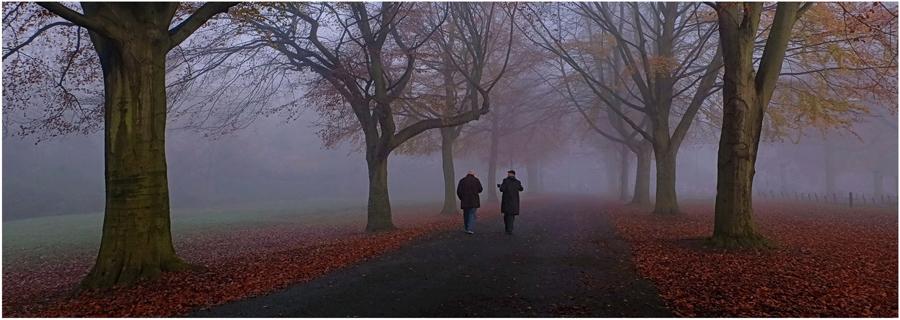 1st Misty Morning in Bristol by Olwyn Wall